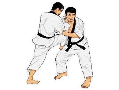 Nihon Taï Jitsu