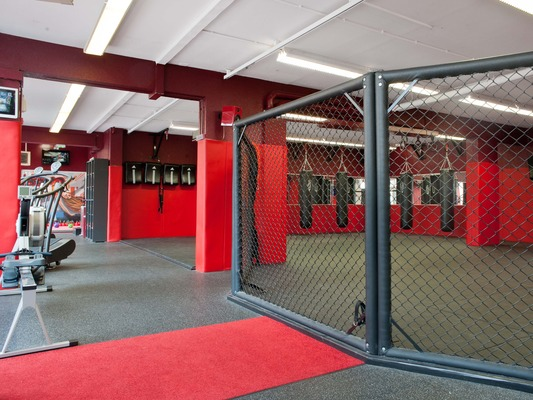 Platinium Hybrid Training Center